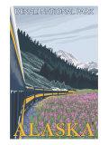 Alaska Railroad Scene  Denali National Park  Alaska