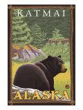 Black Bear in Forest  Katmai  Alaska