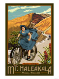 Mt Haleakala Bicycle Rides  Hawaii