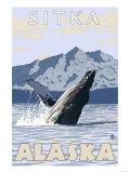 Humpback Whale  Sitka  Alaska