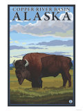 Bison Scene  Copper River Basin  Alaska