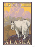 Mountain Goat  Latouche  Alaska