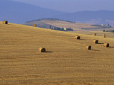 Hay Bales  Val d'Orcia  Siena Province  Tuscany  Italy  Europe