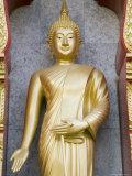 Standing Buddha Statue  Wat Chalong Temple  Phuket  Thailand  Southeast Asia  Asia