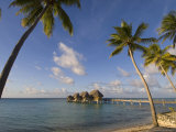 Pearl Beach Resort  Tikehau  Tuamotu Archipelago  French Polynesia  Pacific Islands  Pacific