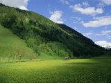 Stubachtal Valley  Hohe Tauern National Park  Salzburgland  Austrian Alps  Austria  Europe