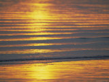 Golden Light on Ripples on the Sea Shore