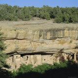 Mera Verde  Mesa Verde National Park  Colorado  USA