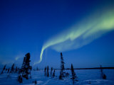 Northern Light  Aurora Borealis  Churchill  Manitoba  Canada