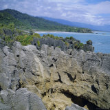 The Pancake Rocks at Punakaiki  West Coast District  South Island  New Zealand