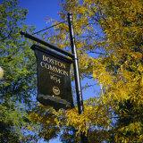 Boston Common Sign  Boston Common  Massachusetts  New England  USA