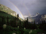 Double Rainbow with Bear Grass in Foreground  Montana  USA