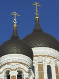 Domes of the Alexander Nevsky Cathedral  Russian Orthodox Church  Toompea Hill  Tallinn  Estonia