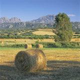 Straw Bales in Fields  Sardinia  Italy  Europe