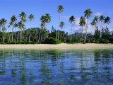 East Coast  Motu Nao Nao  Raiatea Island  Society Islands Archipelago  French Polynesia