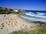 Tamarama  Fashional Beach South of Bondi  Eastern Suburbs  New South Wales  Australia