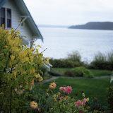 View of Puget Sound  Vashon Island  Washington State  USA