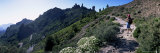 Trail to Roque Nublo  Gran Canaria  Canary Islands  Spain  Europe