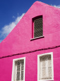 Pink Building on Republique Street  Fort-De-France  Martinique  French Antilles  West Indies