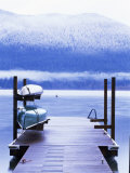 Lake Quinault  Olympic National Park  Unesco World Heritage Site  Washington State  USA