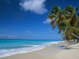 Worthing Beach on South Coast of Southern Parish of Christ Church  Barbados  Caribbean