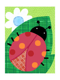 Fun Ladybug