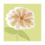 Soft Floral V