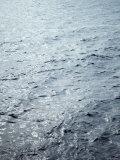 Timeless Sea