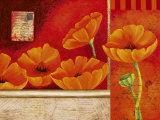 Vermillon d'Anemones