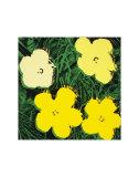 Flowers, c.1970 (Yellow) Reproduction d'art par Andy Warhol