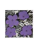 Flowers, c.1965 (Purple) Reproduction d'art par Andy Warhol