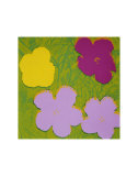 Flowers  c1970 (Yellow  Lilac  Purple)