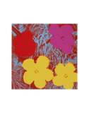 Flowers  c1970 (Red  Pink  Yellow)
