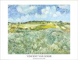 Die Ebene bei Auvers, c.1890 Reproduction d'art par Vincent Van Gogh
