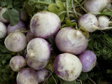 Bunch of Turnips for Sale at a Road-Side Market
