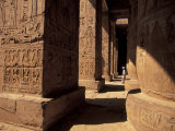 Columns with Reliefs at Karnak Temple in Luxor  Egypt