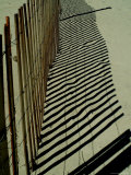 Beach Fence and its Shadow Meander Up the Beach