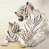 Tigres Blancs  Mere et Fille