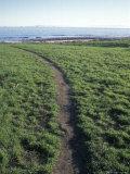 Coastal Access Trail Through Native American Land in Santa Barbara  California