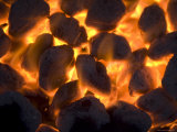 Coals on a Campfire Grill at the 4-H Photo Camp at Halsey  Ne