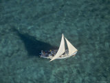 Aerial of a Sailboat over Glover's Reef  Belize