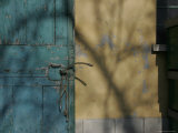 Blue Rustic Door against a Yellow Shadowed Wall  Bologna  Italy