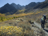 Backpacking in the Fall Colors at Mcgee Creek near Mammoth Lakes  California