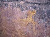 Ancient Aboriginal Rock Art Paintings of Wallaby and Kangaroo  Australia