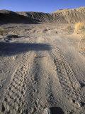 ATV Damage along Palm Wash in the Desert Cahuilla Archaeology Area  California