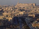 Aleppo with its Citadel