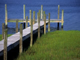 Dock in the Bay