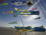 Kites Flying at Beach  Romo  Denmark