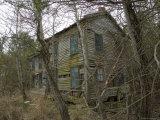Abandoned  Overgrown House