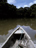 Dugout Canoe on the Amazon River Surrounded by Tropical Rainforest  Peru